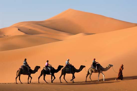 V Emirátech se na velbloudech v poušti i závodí, Zdroj: sevenperfumes.files.wordpress.com