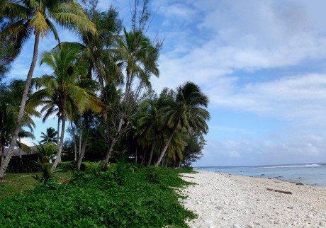 Pobřeží ostrova v Tichém oceánu. Zdroj: sxc.hu