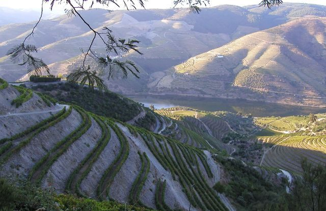 FOTO: Douro, řeka v Portugalsku