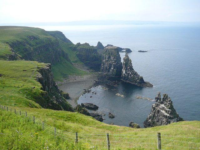 Na severoirském ostrově Rathlin můžete potkat i tuleně a vodní ptáky, papuchalky. Zdroj: Wikimedia Commons