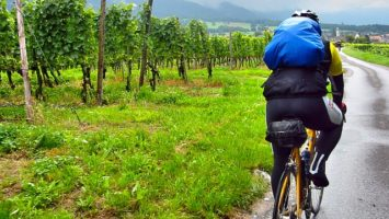 Jak si vybrat horské nebo silniční kolo