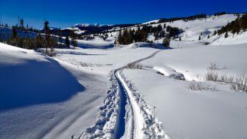 Kam na běžky v Krkonoších