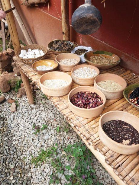 Peruanska kuchyně - Obilniny