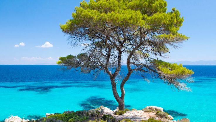 Chalkidiki Řecko