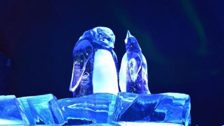 Festival ledových soch