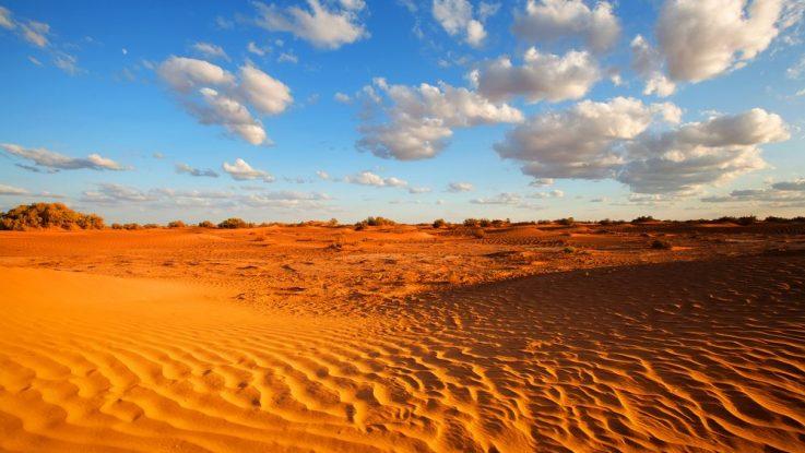 Jak přežít v poušti